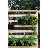 Вертикальный сад (k7)